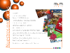 MyM Group - Diseño de web en Flash en Madrid